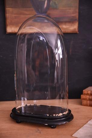 アンティーク オーバル ガラスドーム フレンチ 4