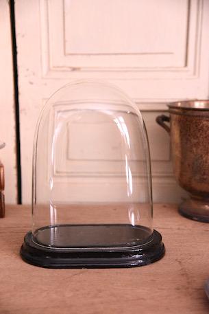 アンティーク オーバル ガラスドーム フレンチ ナポレオン
